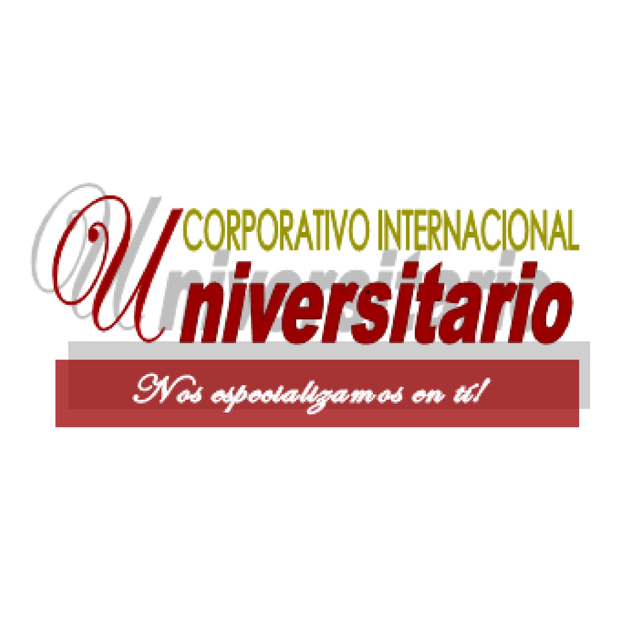 logos_Mesa de trabajo 1 copia 11
